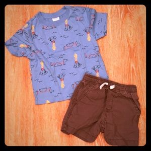 Hanna Andersson Shorts and Tee, Size 3T